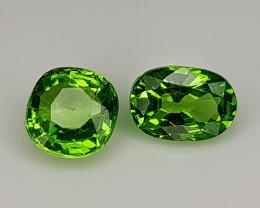 0.75Crt Tsavorite Garnet  Natural Gemstones JI106