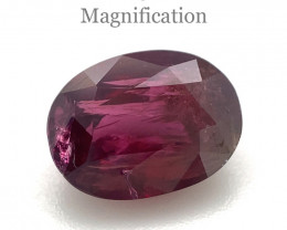2.13ct Oval Red Ruby- $1 N/R Auction