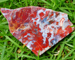 146 CRT Druzy Red Moss indonesian Agate