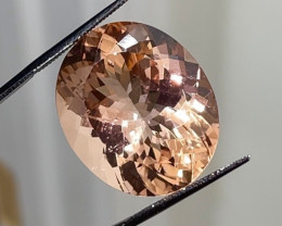 39.34 ct Peach Morganite - Supersized Gem! $8000 retail value