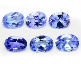 *No Reserve*Tanzanite 1.00 Cts 6pcs  A+ rare Violet Blue Color Natural Gems