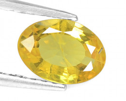 Yellow Sapphire 0.82 Cts Amazing Rare Natural Fancy Loose Gemstone