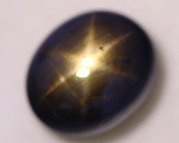 12.98ct Natural Black Star Sapphire Lot SG25