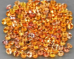 150 Pcs /4.35Ct.   Diamond Cut 1.7 mm.Ravishing Color Yellow Natural  Sapph