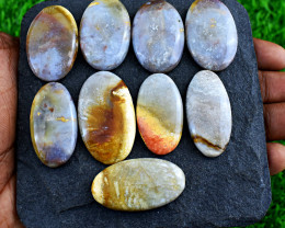 Genuine 318.00 Cts Natural Big Coral Fossil  Cabochon Lot