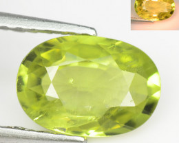 *NoReserve*Chrysoberyl 1.31 Cts Very Rare Yellowish Green Color Natural Gem