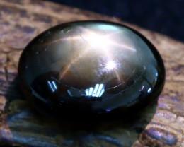 Star Sapphire 8.98Ct Natural Thailand Golden Black Star Sapphire A0210