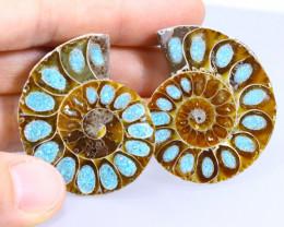 128.82cts Natural Ammonite Turquoise Pairs Stones / KL678