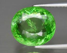CERTIFICATE Incl.*Big! 5.11ct 11x9.8mm Oval Natural Green Tsavorite Garnet