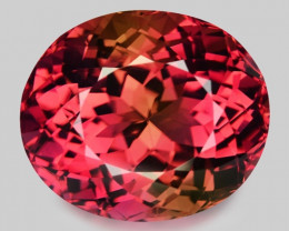 18.36 CT MASTER CUT PINK TOURMALINE TOP LUSTER PT1