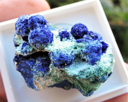18.87g AZURITE MALACHITE SPECIMEN LAVRIO GREECE MOUNTED IN DISPLAY CASE