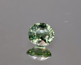Natural Green Tourmaline 0.80 Cts Good Quality Gemstone