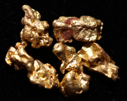 0.40-0.41Grams-ONE NUGGET ONLY-Australian Kalgoorlie Gold Nugget CCC 1346