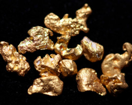 0.16 Grams - ONE NUGGET ONLY - Australian Kalgoorlie Gold Nugget CCC 1353