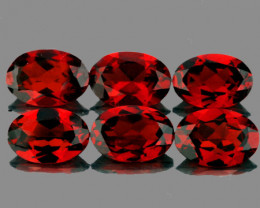 6x4 mm Oval 6 pcs 3.18cts Orange Red Garnet [VVS]