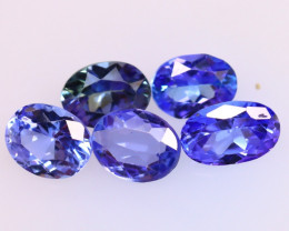Tanzanite 2.64Ct 5Pcs Natural VVS Purplish Blue Tanzanite E1813/D3