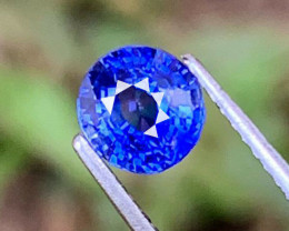 1.020 CT IF CLEAN  NATURAL ONLY HEATED CORN BLUE SAPPHIRE SRI LANKA