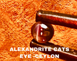 0.32CT -ALEXANDRITE CATS EYE- BEST FROM CEYLON- FROM COLLECTOR