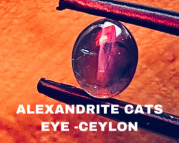 2.33 CT -ALEXANDRITE CATS EYE- BEST FROM CEYLON- FROM COLLECTOR