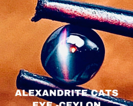 0.60CT -ALEXANDRITE CATS EYE- BEST FROM CEYLON- FROM COLLECTOR