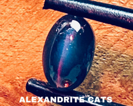 2.22 CT -ALEXANDRITE CATS EYE- BEST FROM CEYLON- FROM COLLECTOR