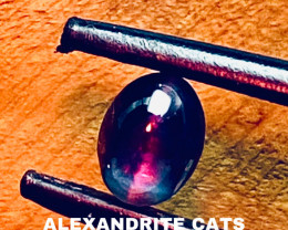 1.31 CT -ALEXANDRITE CATS EYE- BEST FROM CEYLON- FROM COLLECTOR
