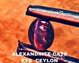 0.61 CT -ALEXANDRITE CATS EYE- BEST FROM CEYLON- FROM COLLECTOR
