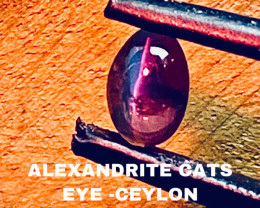 0.81 CT -ALEXANDRITE CATS EYE- BEST FROM CEYLON- FROM COLLECTOR
