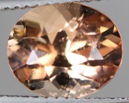 2.96 CT Tourmaline Precision Cut and Polished -TS22