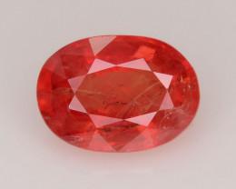 Top Grade 0.96 ct Red Sapphire ~ K