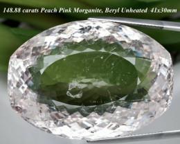 Museum Rare! 148.88ct Peach Pink Morganite 41x30mm