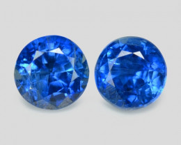 Kyanite 1.41 Cts 2 Pcs Fancy Royal Blue Color Natural Gemstone