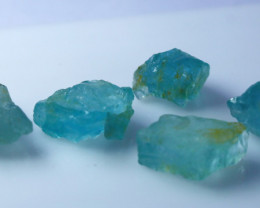 56.30 CTs Natural & Unheated~Blue Aquamarine Rough Lot