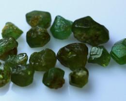 NR!! 30.70 CTs Natural & Unheated~ Green Garnet Rough Lot