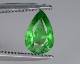 Top Quality 0.70 ct Green Tsavorite Garnet