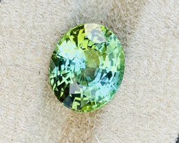 11.56 ct green tourmaline.  No Treatments.