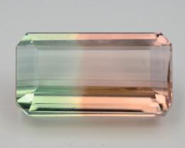 Top Grade & Cut 9.35 Ct Natural Bi Color Tourmaline H.M