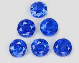 Kyanite 1.06 Cts 6 Pcs Fancy Royal Blue Color Natural Gemstone