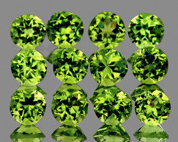 4.00 mm Round 12 pcs 3.45cts Green Peridot [VVS]