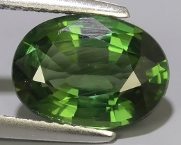 3.15 CTS EXQUISITE GREEN COLOR UNHEATED APATITE~OVAL EXCELLENT!