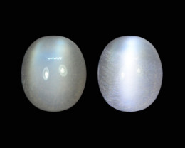 11.60 Cts 1Pc Stunning Lustrous Natural Moonstone