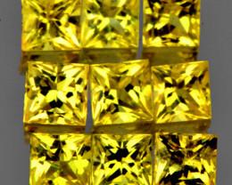 2.50 mm Square Princess Cut 9 pcs 1.07cts Ceylon Yellow Sapphire [VVS]