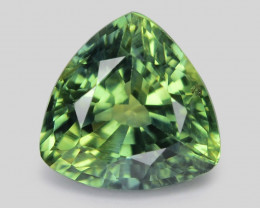 Parti Sapphire 0.74 Cts Amazing Rare Natural Fancy Yellowish Green Loose Ge
