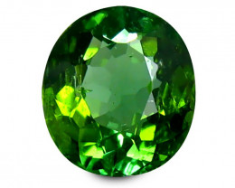 Tourmaline 1.46 Cts Green Portuguese Cut BGC913