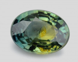 Parti Sapphire 0.45 Cts Unheated Rare Natural Yellowish Green-Blue Loose Ge