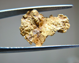 Gold Nugget from Panama