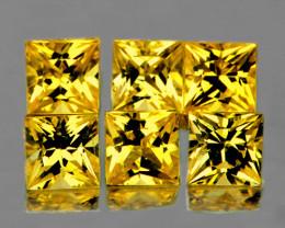 2.70 mm Square Princess 6 pcs 0.98ct Ceylon Yellow Sapphire [VVS]