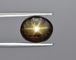 Natural Gold Sheen Star Sapphire 7.45 Cts from Thailand