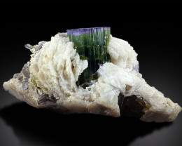 Tourmaline Crystals with Lepidolite Albite Mineral Specimen from Paprok Afg