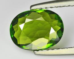 Tourmaline 1.37 Cts Green Portuguese Cut BGC914